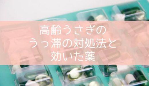 高齢うさぎのうっ滞の対処法と効いた薬(ガスピタン、ビオフェルミン)
