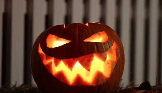 ハロウィンのかぼちゃじゃない?ジャック・オー・ランタン